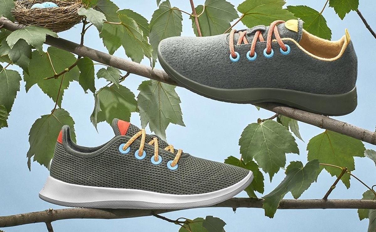 Allbirds sparked an eco-fashion